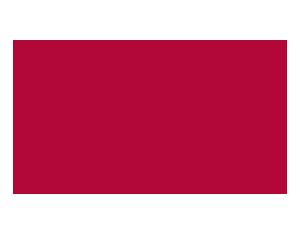 Junior Seau Foundation