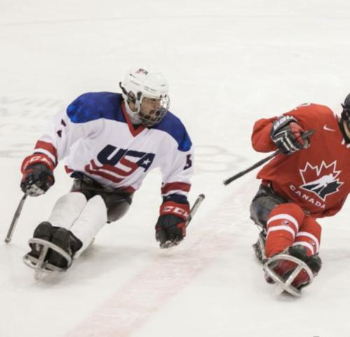 David Phillips_sled hockey